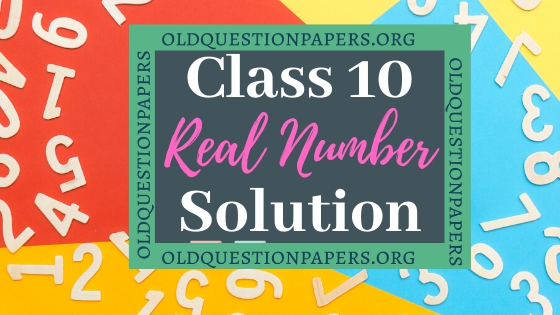 Class 10 real number solution